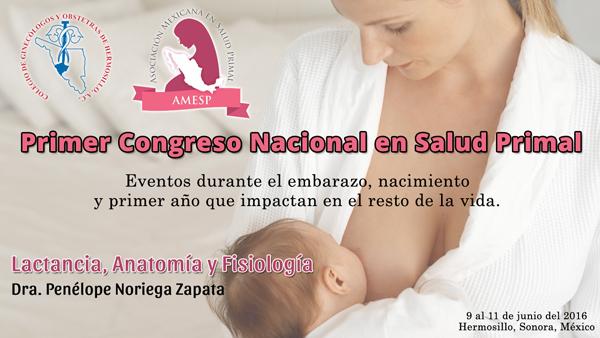 Lactancia, Anatomía y Fisiología | Salud Primal Mexico